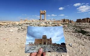 Palmyra b&a